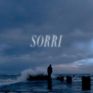 JonasDavid_Sorri_Cover_600